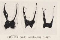 U6ono